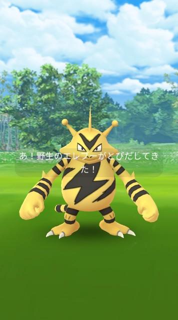 f:id:daichipokego777:20201117100522j:image