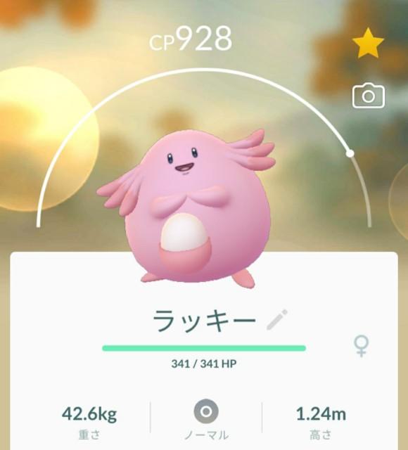 f:id:daichipokego777:20201121200538j:image