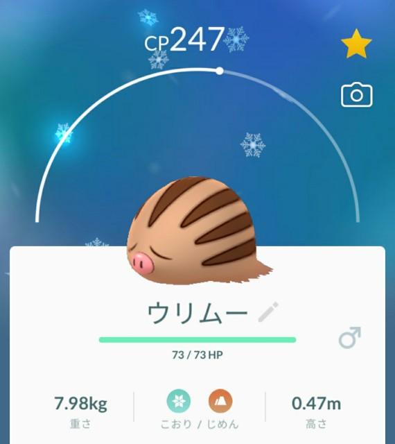 f:id:daichipokego777:20201210124150j:image