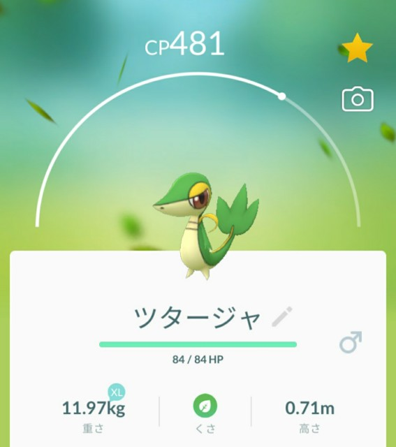 f:id:daichipokego777:20201212193644j:image