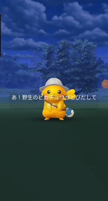 f:id:daichipokego777:20201216111229j:image