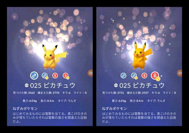 f:id:daichipokego777:20201216113955j:image