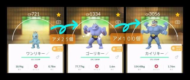 f:id:daichipokego777:20210114000412j:image