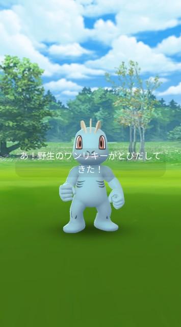 f:id:daichipokego777:20210119095801j:image