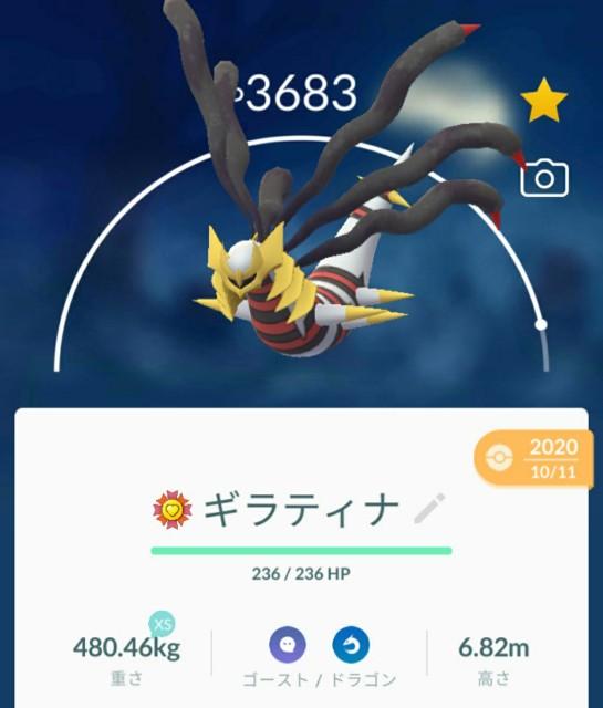 f:id:daichipokego777:20210209073957j:image