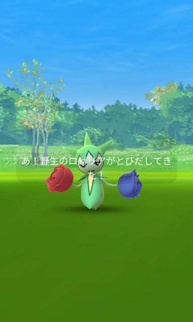 f:id:daichipokego777:20210210103428j:image