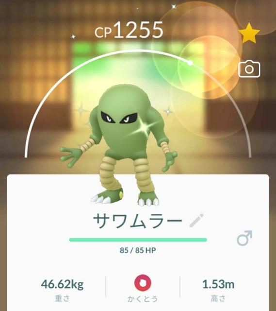 f:id:daichipokego777:20210221121837j:image