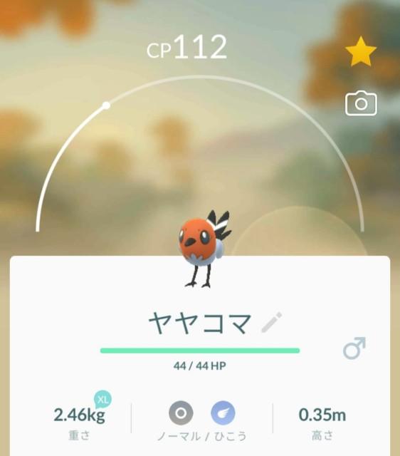 f:id:daichipokego777:20210309194010j:image