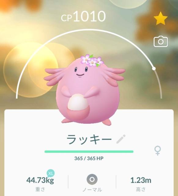 f:id:daichipokego777:20210409104241j:image