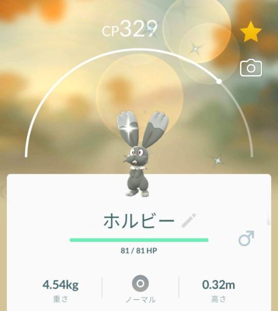 f:id:daichipokego777:20210409113254j:image