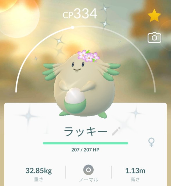 f:id:daichipokego777:20210409201901j:image