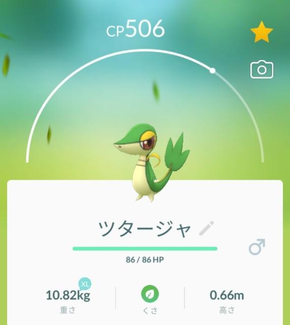 f:id:daichipokego777:20210413191214j:image