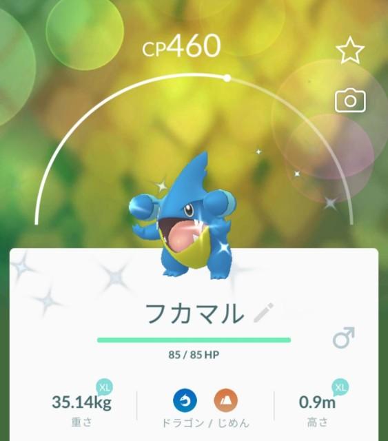 f:id:daichipokego777:20210516103516j:image