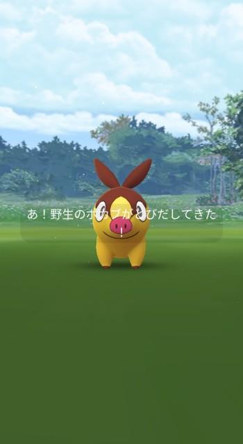 f:id:daichipokego777:20210704093100j:image