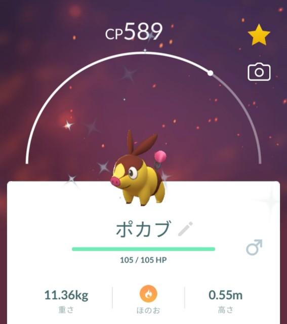 f:id:daichipokego777:20210704093848j:image