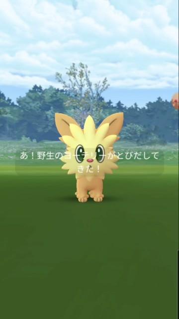 f:id:daichipokego777:20210704094446j:image