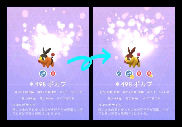 f:id:daichipokego777:20210704095824j:image