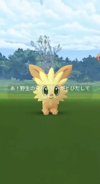 f:id:daichipokego777:20210704101243j:image