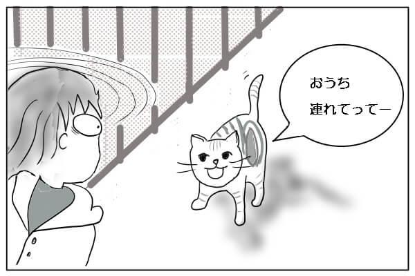 振り向くと猫がいて驚く女性
