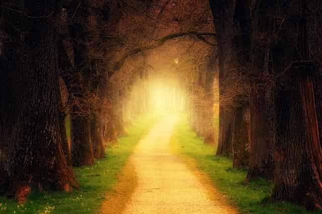 道の向こうに光が見える