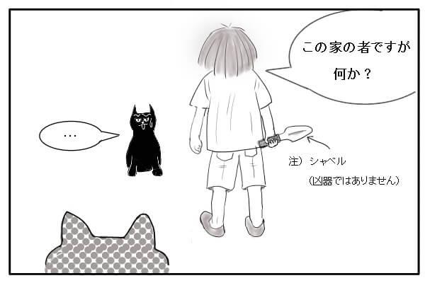 野良猫と向かいあう女