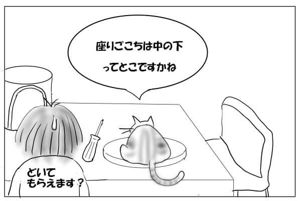 板の上に乗る猫