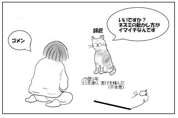 猫と飼い主1