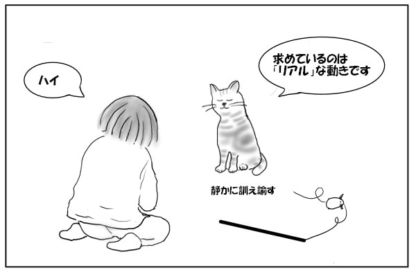 猫と飼い主2