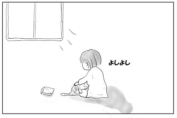 膝にのる猫