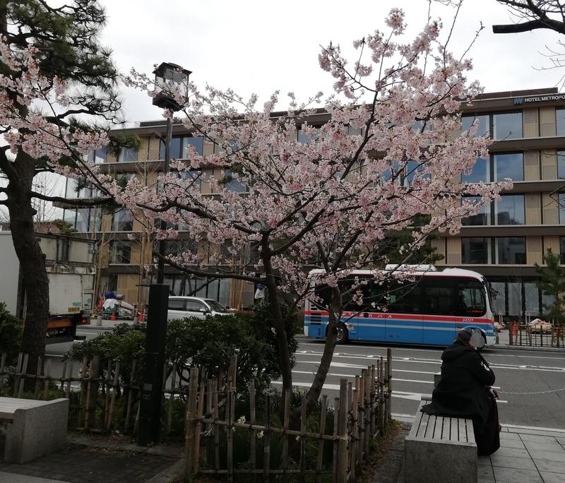 鎌倉の通り