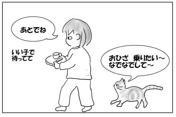 飼い主を追いかける猫
