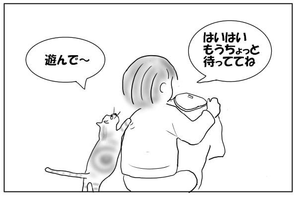 飼い主の背中をガリガリする猫