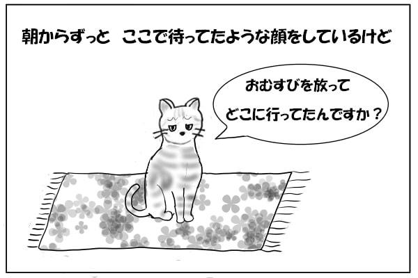 留守番する猫