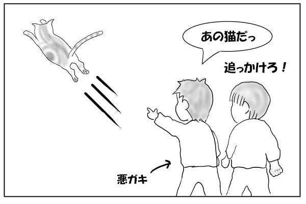 子供に追い回される猫