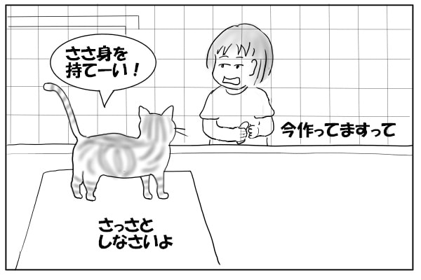 おやつを要求する猫