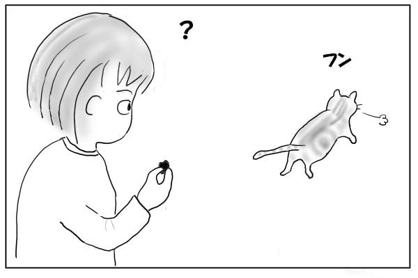 ぷいっと去る猫