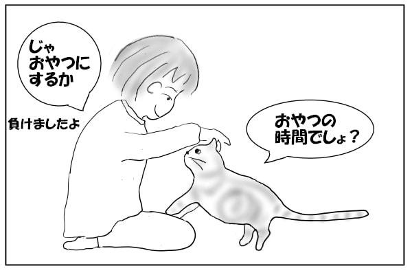 猫と見つめ合う