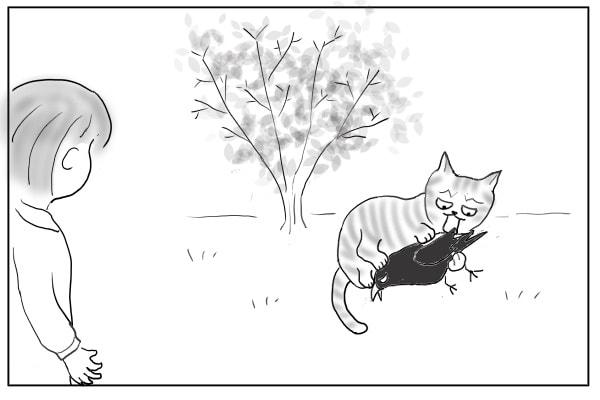 カラスをしとめる猫