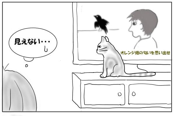 テレビの前に座る猫