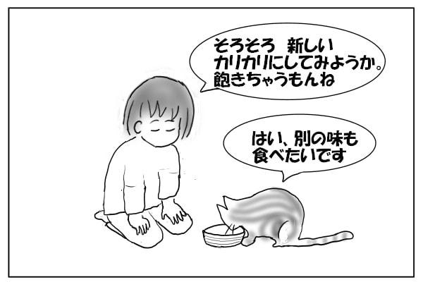 ゴハン中の猫