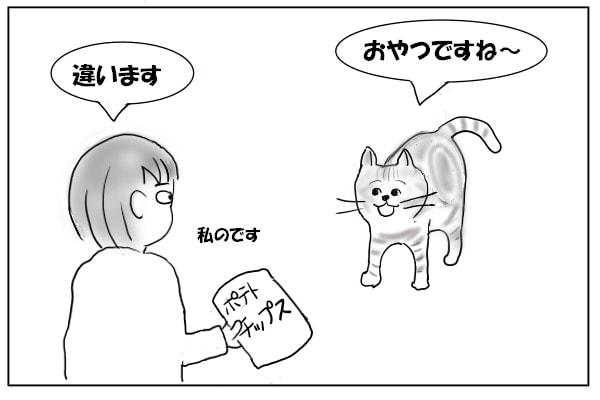 おやつに反応する猫