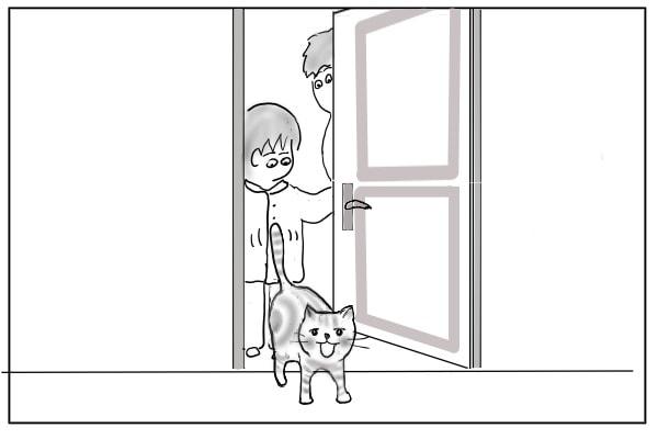 始めて寝室に入る猫