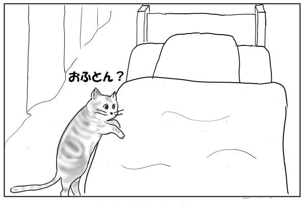 点検する猫