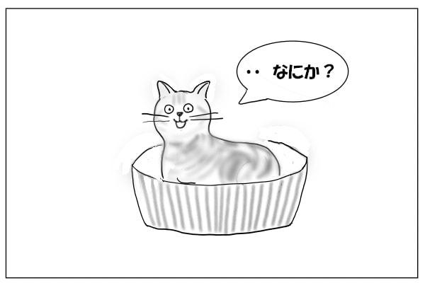 ぎょっとしてる猫