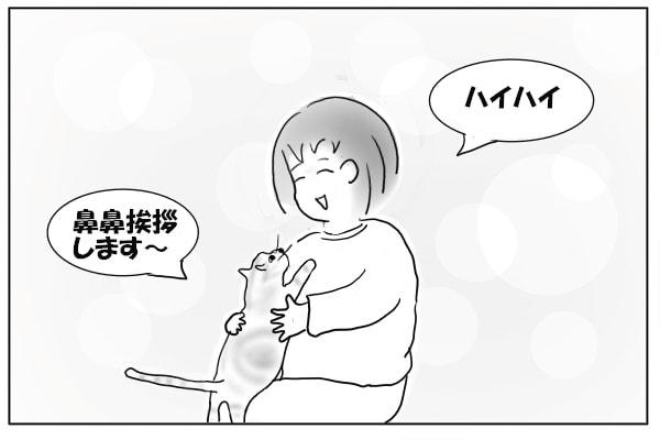 世界一の猫