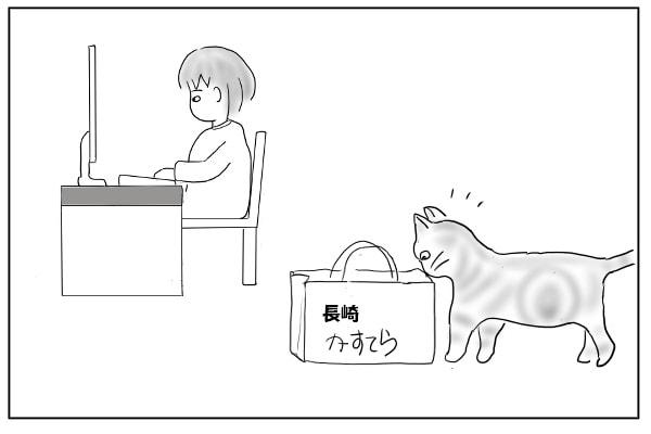 袋を覗きこむ猫