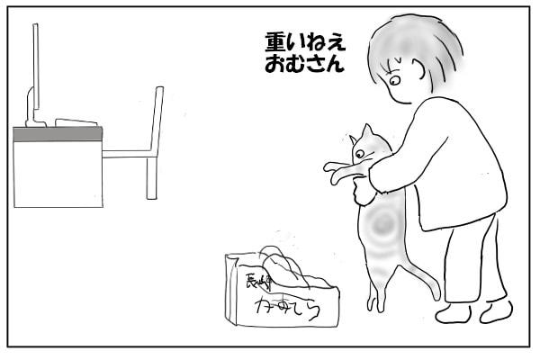 猫をどかす