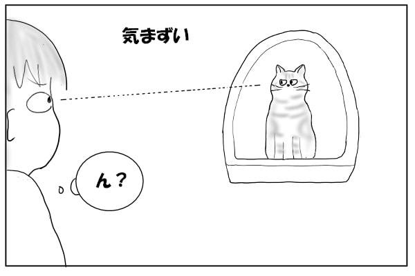 トイレ中の猫と目が合う