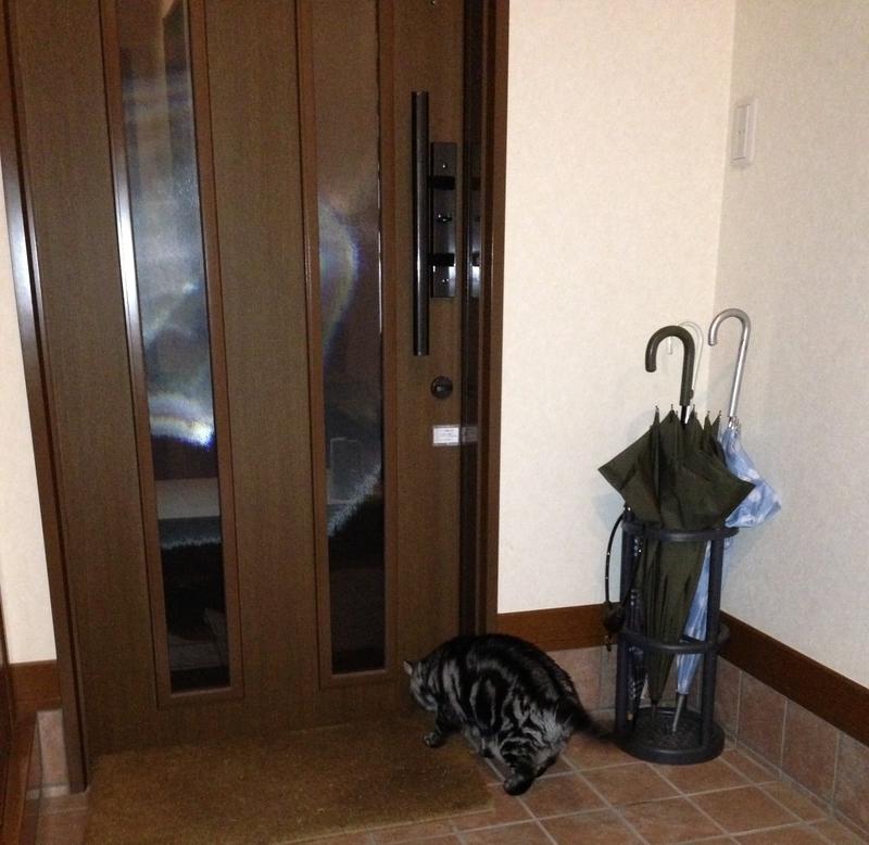 玄関のドアを匂いチェック