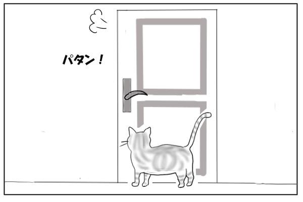 しめられたドア